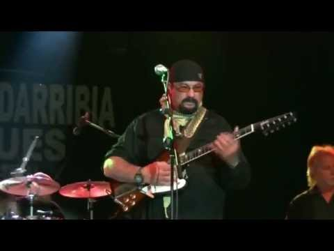 Steven Seagal Blues Band. Live