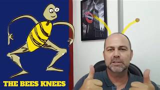 English expression - the bees' knees.