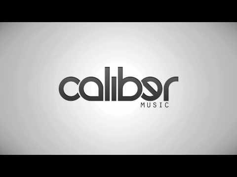 MakO - The Fixer [Caliber Music]