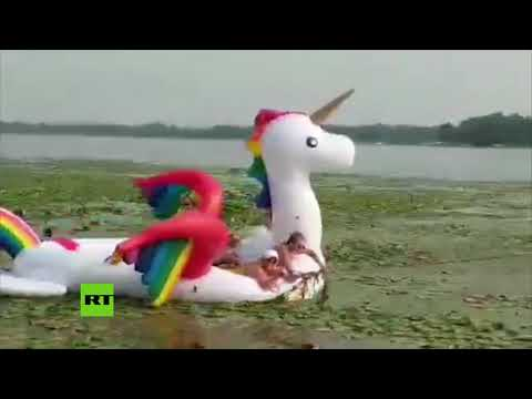 RT en Español: Surrealista rescate de un 'unicornio' en un lago de EE.UU.