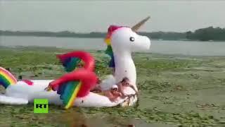 Surrealista rescate de un unicornio en un lago de EE.UU.