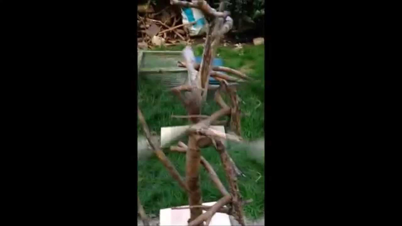 Diy how to make a natural wood parrot perch climbing for How to build a bird stand