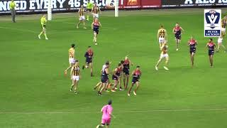 Grand Final Casey Demons vs Box Hill Hawks VFL highlights 2018