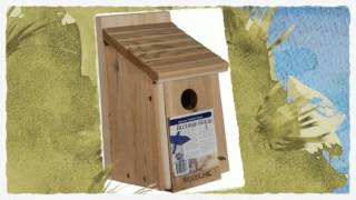 Plans How To Build A Birdhouse