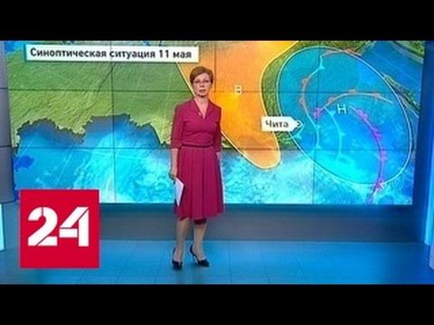 """""""Погода 24"""": ураган в Чите"""