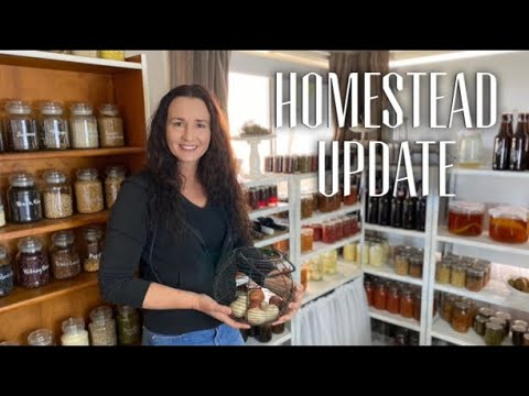 LIFE, CHALLENGES, LOSS & WINS ON THE HOMESTEAD - Homesteading Update