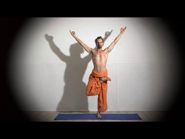 Posture de Yoga : Vrikshasana / Posture de l'Arbre
