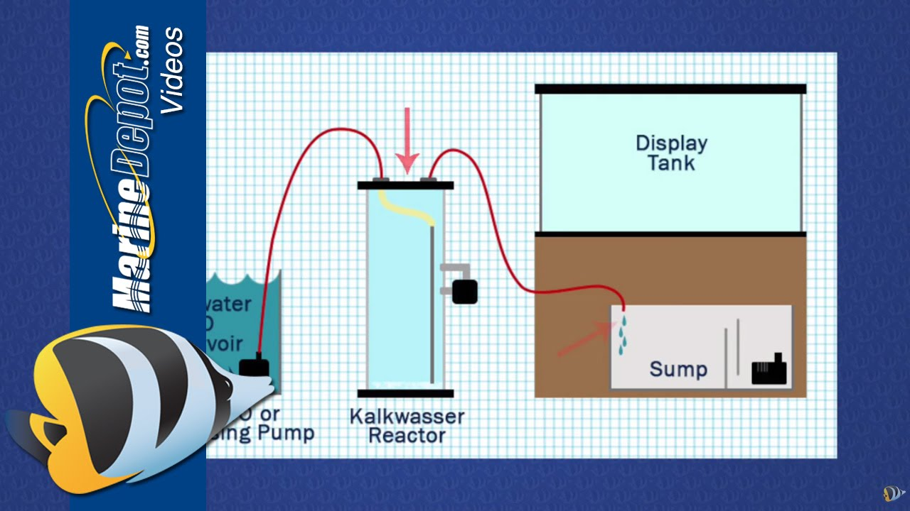 How to Use a Kalkwasser Reactor to Maintain Calcium & Alkalinity Thumbnail