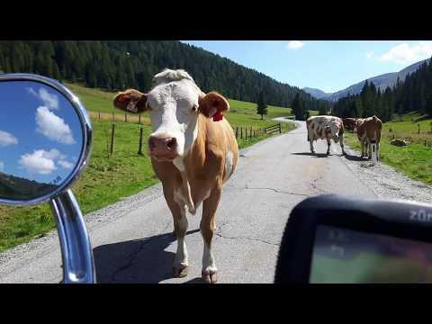 Roadtrip 2017 Alps, Austria, Slovenie, Italie, Swiss