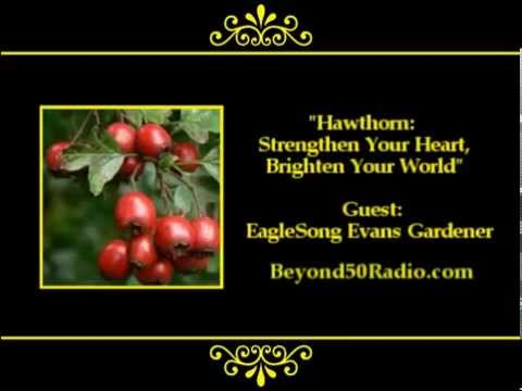 Hawthorn: Strengthen Your Heart, Brighten Your World!