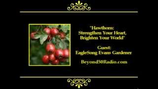 Hawthorn: Strengthen Your Heart, Brighten Your World!