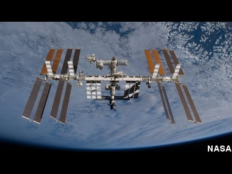 Did Russia Really Find Plankton On The ISS? NASA Not So Sure
