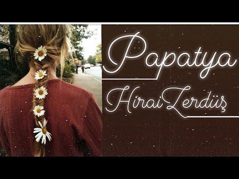 HiraiZerdüş - Papatya