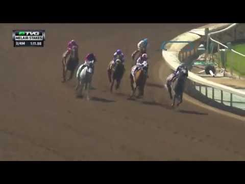 RACE REPLAY: 2016 Melair Stakes Featuring Enola Gray