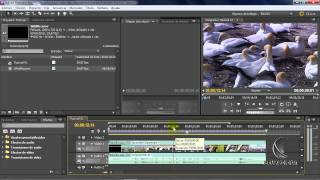 Tutorial Adobe Premiere Pro CS5-Tecnicas de edicion(proximo curso)