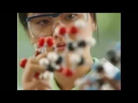 Breaking News 2015 MIXING Animal Human DNA Geo Engineering bio cement for human bones