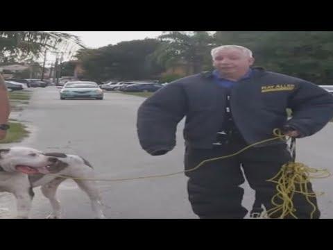 Bulletproof Dog Whisperer