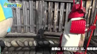 今回のミナモTVは岐阜県岐阜市にある「金華山(岐阜城)」登頂の巻。 金...