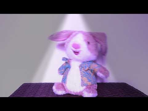 Hallmark Sweet Dancin Bunny Rabbit Easter Jelly Bean Song Singing Dancing Plush Doll Dance Party
