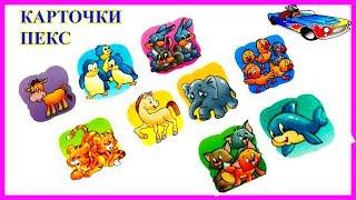 Карточки Пекс Развитие ребенка Дикие и домашние животные