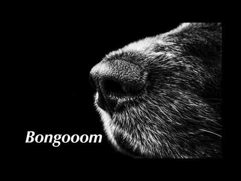 DJ MINAMI - Bongooom