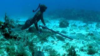 Download Video One Fish Going East.mp4 MP3 3GP MP4