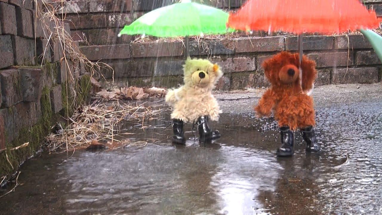 Rain Charly Steiff Teddy Bears YouTube