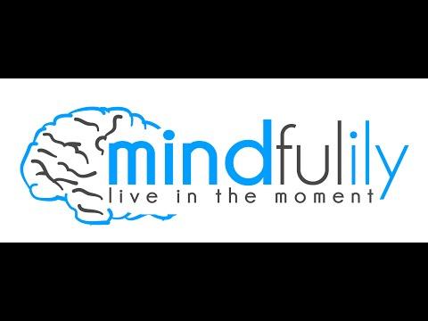 Mindfulness Meditation: The Mindfulness Exercise of Silent Reflection