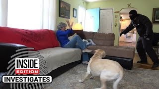 Video Dogs Tested to See Whether They'd Defend Owner During Home Invasion download MP3, 3GP, MP4, WEBM, AVI, FLV Agustus 2018