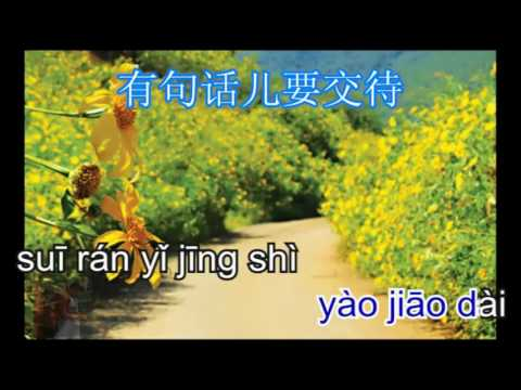 Hoa Dại Bên Đường Không Nên Hái   路邊的野花不要採 - karaoke