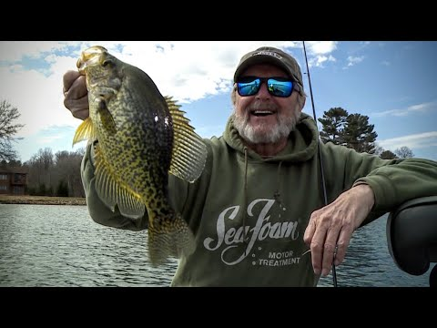 ice-out-crappies-&-wavy-label-sunglasses