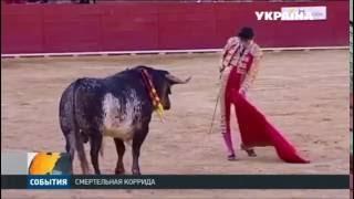 В Испании на глазах у миллионов зрителей, бык убил тореадора