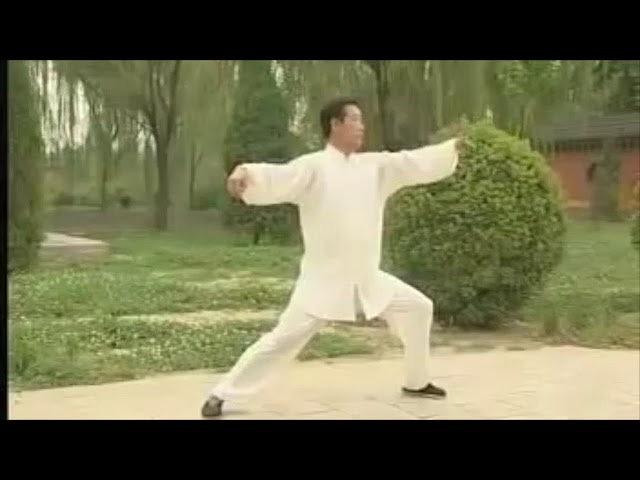 Wang Xi An - Tai Chi style Chen Laojia  [陈氏太极拳老架 Taijiquan style Chen]