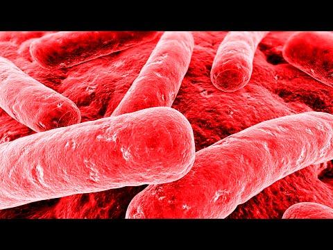 Гепатит форум «На Остановке»