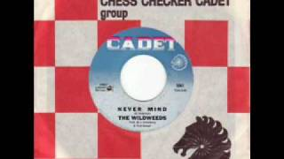 The Wildweeds - Never Mind