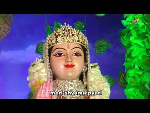 meri shyama pyari   live24live