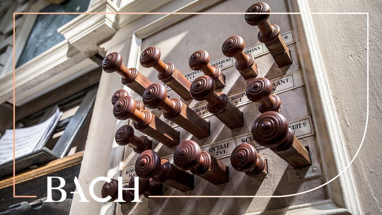 Download Bach - Wo soll ich fliehen hin BWV 694 - Van Doeselaar | Netherlands Bach Society
