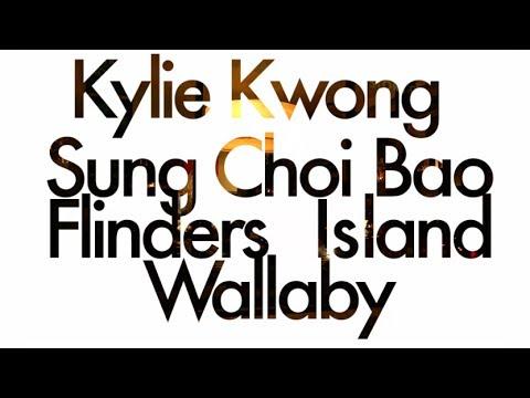 Kylie Kwong's Flinders Island Wallaby Sung Choi Bao