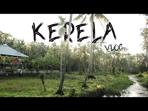 kerela Vlog | India travel