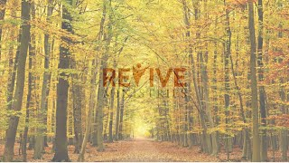 """Revive Ministries Livestream """"It's ok to fall"""" With Michael"""