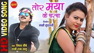 Tor Maya Ke Charcha - तोर मया के चरचा || Nisha Choubey & Dani Ram Sahu 07772054693 - CG Song
