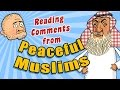 Reading Comments from Peaceful Muslims