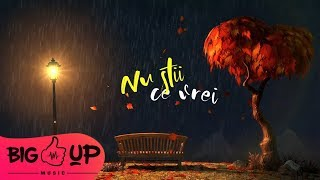 Theo Rose - Nu Stii Ce Vrei | Lyric Video
