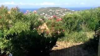 Corse, Tiuccia locations : Tranquillité dans le maquis , parmi les lauriers roses!...