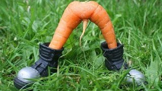 Смешные Овощи и Фрукты !!!