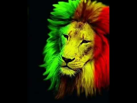 Tribal Seeds - Rootsman party [Reggae96]