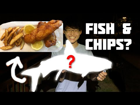 FISH & CHIPS Using This Fish? (Catch And Cook | Fishing In Singapore)