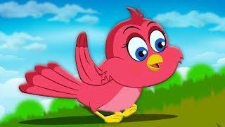 Chidiya Rani Badi Sayani | चिड़िया रानी बड़ी सयानी | Kids Hindi Poem | Hindi Balgeet | Kids Rhymes