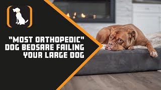 "New Experiment Proves Most ""Orthopedic"" Dog Beds are Failing Your Large Dog"