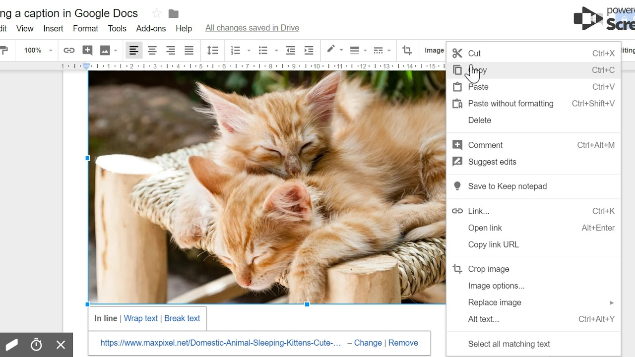 Photo Caption Google Docs 2